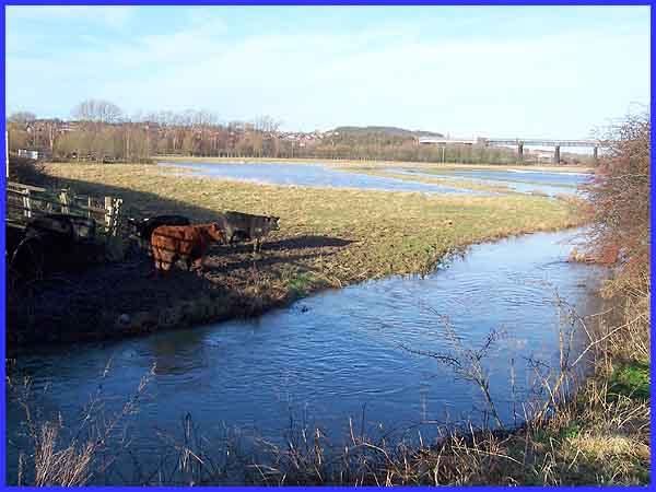 Langley Mill - Wikipedia